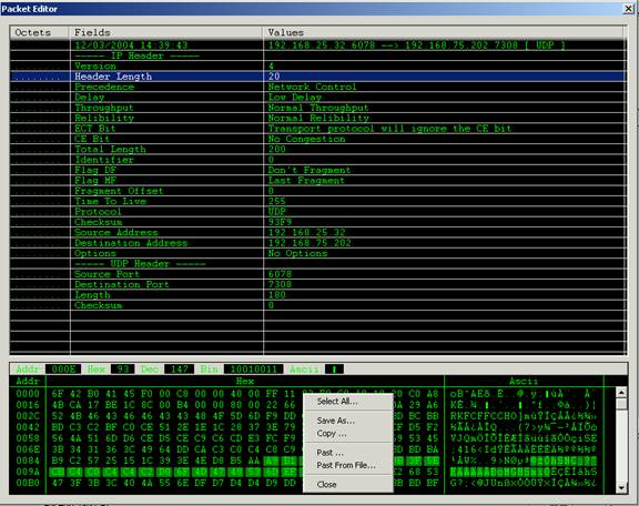Edit Packet - Network Packet Decoder and Editor