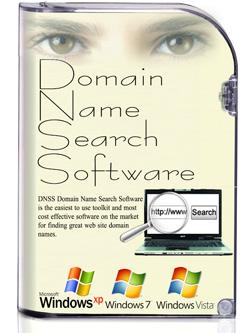 Logiciel de Recherche de Nom de Domaine de DNSS