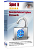 SpotIE Advanced Internet Explorer Password Recovery Solution